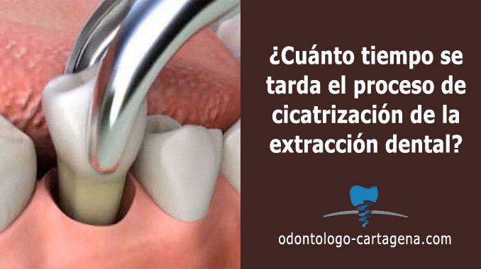 proceso de cicatrización de la extracción dental