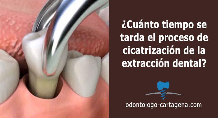 cicatrizacion-extraccion